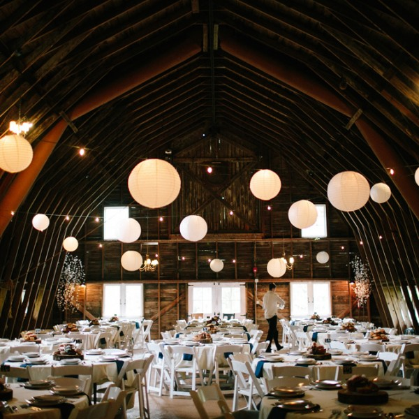blue dress barn // abby + nick